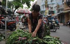 Trước Tết Đoan Ngọ, hàng hóa chậm lụt hơn năm ngoái