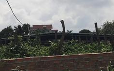 Điều tra vụ nguyên bí thư huyện được cấp đất ngay trong hành lang đường điện