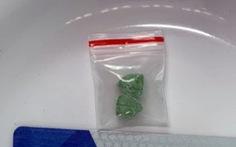 Từ TP.HCM xuống Vũng Tàu thuê nhà nghỉ chơi ma túy tập thể