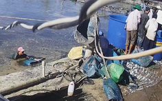 Cà Mau: Bắt thêm 6 người nghi dàn cảnh trộm tôm