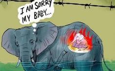 Đau đớn khi xem tranh vẽ voi mẹ mang thai bị giết bằng thuốc nổ