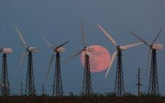 Ngắm trăng chuyển màu hồng trong đêm nguyệt thực