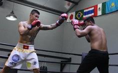 Tay đấm Trương Đình Hoàng - điều chưa kể - Kỳ 2: Knock-out... chính mình