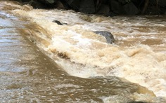 3 học sinh lớp 8 chết đuối khi tắm suối, sau 3 ngày mới tìm được thi thể cuối