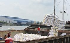 80.000 tấn gạo miễn thuế sẽ được xuất khẩu vào EU mỗi năm