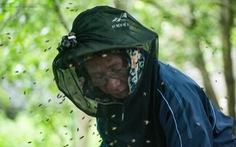 Một ngày theo chân gia đình gần 30 năm nuôi ong lấy mật