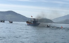 Tàu câu mực bị chìm là do tàu chở hàng của Vinacomin đâm