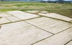 Bắc Trung Bộ nóng nhất 50 năm, gần 26.000ha lúa bị hạn