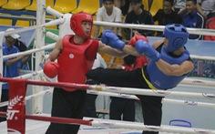Đề xuất đưa võ cổ truyền Việt Nam vào SEA Games