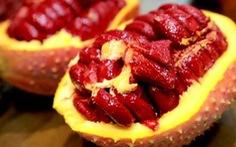 Mùa dịch, bí quyết tăng đề kháng với nước ép trái cây độc đáo từ táo và gấc