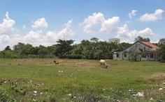 Đất đai khu công nghiệp: Nơi xài không hết, chỗ bỏ hoang