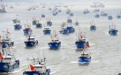 Vét sạch mực ở biển Nam Mỹ, Bắc Kinh áp đặt luôn 'lệnh cấm đánh bắt'