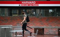 Chỉ 40% sinh viên Harvard được phép trở lại trường sau dịch COVID-19