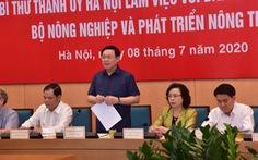 Hà Nội muốn làm đê kết hợp đường, làm đô thị hai bên sông Hồng