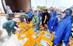Ngư dân hối hả đưa hải sản vào bờ tránh bão số 2