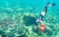 Phát động cuộc thi sáng kiến thanh niên 'trả xanh cho biển' năm 2020