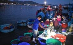 Cảng cá giữ an toàn trong mùa dịch