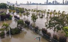 Nước sông Dương Tử ở mức nguy hiểm, Trung Quốc nâng mức phản ứng với lũ