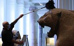 Bảo tàng Anh phủi bụi kho tàng hiện vật, chuẩn bị đón khách trở lại sau 163 ngày