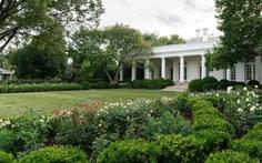 Vườn hồng Nhà Trắng của bà Melania Trump bị chê buồn chán