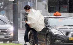 Hàn Quốc, Triều Tiên căng mình chống bão Bavi siêu mạnh