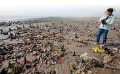 Đi khắp Việt Nam, chụp hàng ngàn bức ảnh để cứu biển