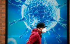Nghiên cứu của Nhật Bản: Ozone có thể vô hiệu hóa virus corona