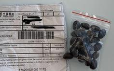 Gói hàng hạt giống 'không mời mà đến' từ Trung Quốc gây rối ở Pháp