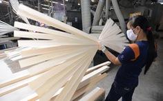 Hạt điều và ngành gỗ 'lội ngược dòng'