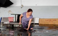 Mưa ngập 12 tiếng chưa rút, hầm chui biến thành hầm chứa nước