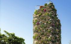 Xây chung cư cho hơn 20.000 cây xanh