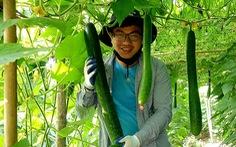 Chàng thanh niên Mường và nông sản sạch
