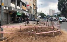 Cây dầu cổ thụ ở Bình Thạnh khỏe mạnh nhưng bị đốn hạ vì 'cản trở giao thông'