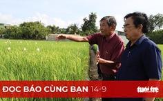 Đọc báo cùng bạn 14-9: Gạo Việt đừng mải mê sản lượng