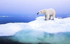 Khí hậu Bắc Cực 'đổi mới'