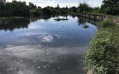 Khu công nghiệp lớn nhất Sóc Trăng gây ô nhiễm môi trường