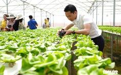 Lo ngại xây dựng trái phép, Đà Lạt dừng phát triển du lịch canh nông