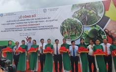 Có EVFTA, trái cây Việt Nam lợi thế hơn trái cây Thái Lan vào EU