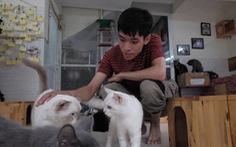 Ngôi nhà cứu những chú mèo 'bất hạnh' của thanh niên Việt xuất hiện trên AFP