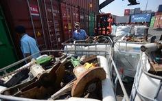 Tổng cục Hải quan 'cho 30 ngày' xử lý nhanh container phế liệu tồn tại cảng
