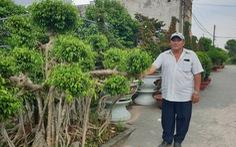 Chủ tịch xã Thới Tam Thôn bị tố mượn 4 cây sanh, 2 nguyệt quế... không trả