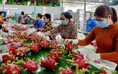 Trung Quốc tăng kiểm soát chất lượng: Xuất khẩu trái cây Việt Nam gặp khó