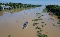 Đồng bằng sông Cửu Long có mùa lũ thấp nhất trong 10 năm qua?