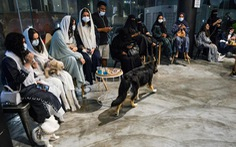 Quán cà phê đầu tiên dành cho người nuôi chó tại Saudi Arabia