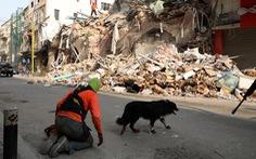 1 tháng sau vụ nổ, Lebanon phát hiện dấu hiệu sự sống dưới tòa nhà đổ nát