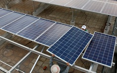 Phút thứ 89 của chính sách, dự án điện mặt trời tăng 'khủng'