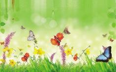 Thơ: Kỳ diệu những cánh bướm