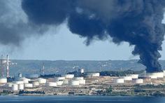 Nồng độ CO2 trong khí quyển ảnh hưởng đến sự phát triển của phổi