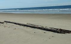 Tàu đắm trăm năm bất ngờ 'trồi' lên bãi biển