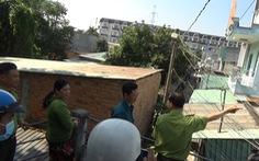 Đàn khỉ 'đại náo' khu dân cư: Đã gây mê, đưa về trạm cứu hộ 2 con khỉ